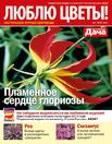 lyublyu-cvety